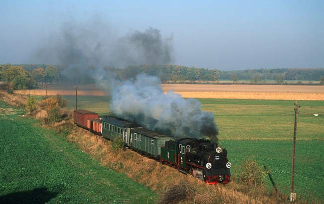 Steam train Gniezno - Anastazewo